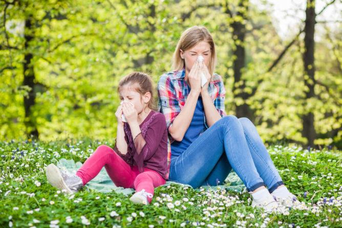 Reacciones alérgicas: Polen de las plantas, LTP y profilinas
