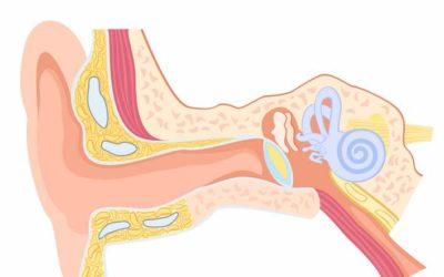 Dolor de oídos en niños: Causas, tratamiento y cómo evitarlo